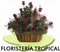 Floristería Tropical