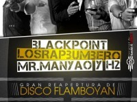 Flamboyan Disco Bar